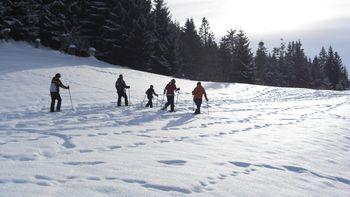 Schneeschuhtouren Winter-Arrangement
