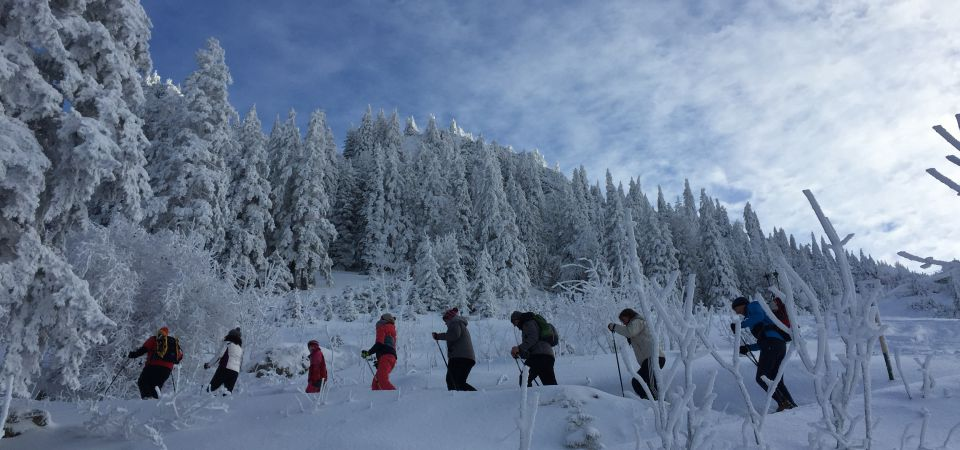 Snowshoe Tours Winter Package