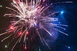 New Year's Gala | 7 Nächte