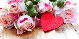 Romantik Pur