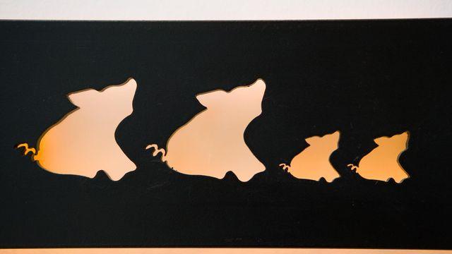"""Ferienwohnung """"Schweinchen"""""""