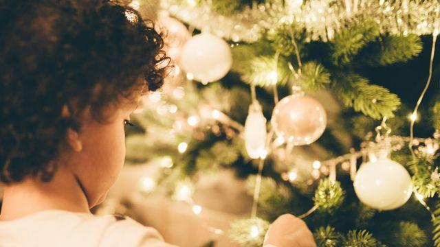 Winter in den Bio-Bergen - Kinder frei