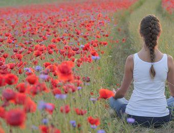 Top Angebot: Yoga und basisch schlemmen - Biolandhaus Arche