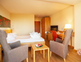 Classic double room - Bio-Thermalhotel Falkenhof