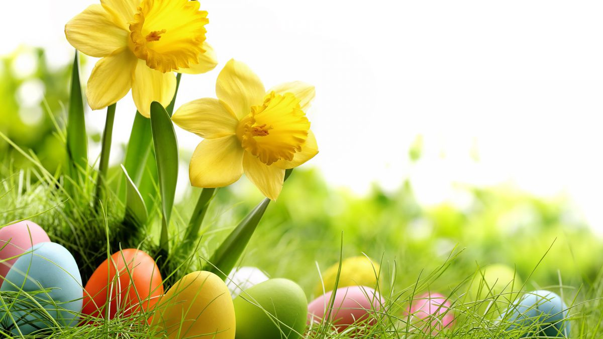 Pasqua al theiner's garten
