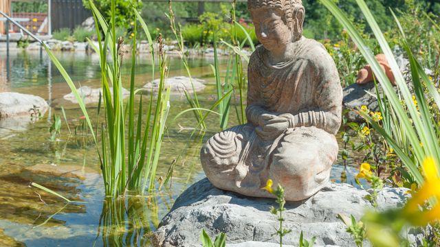 Yoga und Ayurveda Vitalfastenwoche
