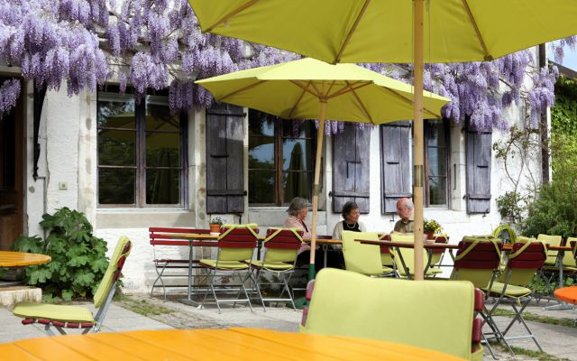 Terrace with blooming wisteria