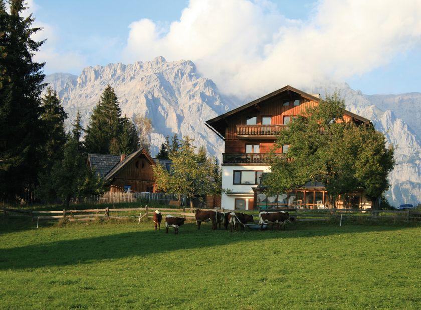 Naturhaus Lehnwieser, Ramsau am Dachstein, Stiria, Austria (1/8)
