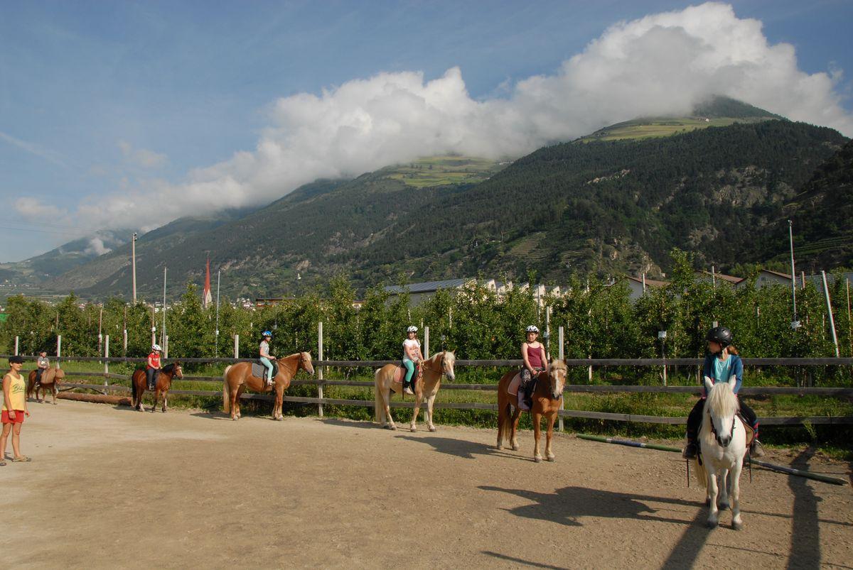 Esperienza a cavallo in Val Venosta