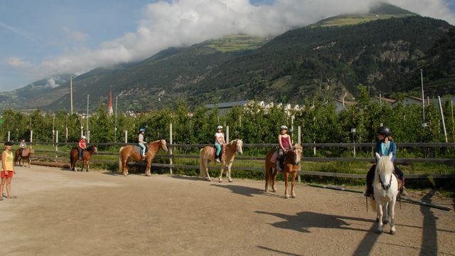 Esperienza cavallo Val Venosta