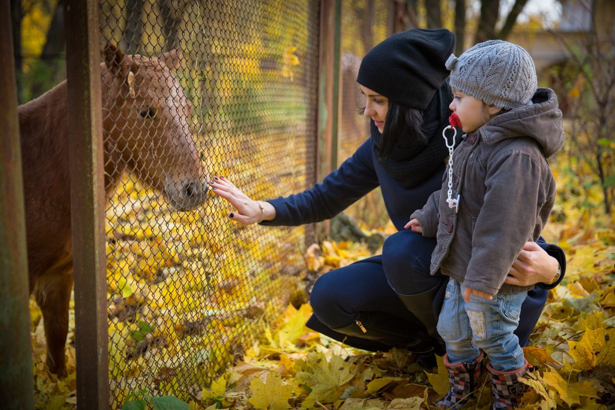 Settimana di equitazione per i più piccoli