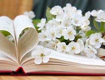 biohotel be bio be active kirschblüte