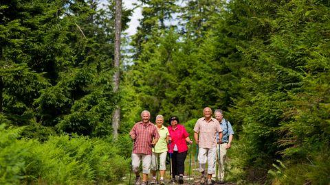 Expérience de randonnée  Adler dans le parc naturel Centre/Nord