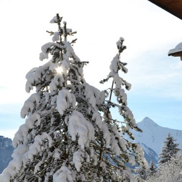 , Magdalena Hütte in Hippach, Tirol, Tyrol, Austria