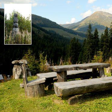 Sitzbänke, Kaiser-Franz-Josef Hütten in Hochfügen, Tirol, Tirol, Österreich