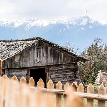 Summer, Reh's Wiesen Hütte, Lüsen/Brixen, Südtirol, Alto Adige, Italy