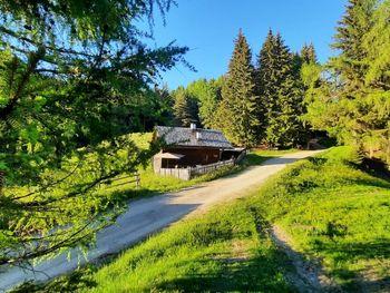 Reh's Wiesen Hütte - Trentino-Südtirol - Italien
