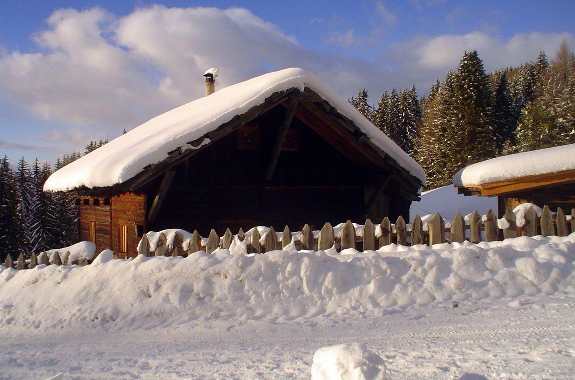 Reh's Wiesen Hütte, Rueckansicht