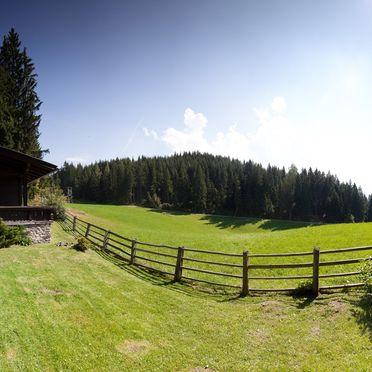 Summer, Steindl Häusl in Reith, Tirol, Tyrol, Austria