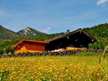 Oberholzerhütte - Salzburg - Österreich