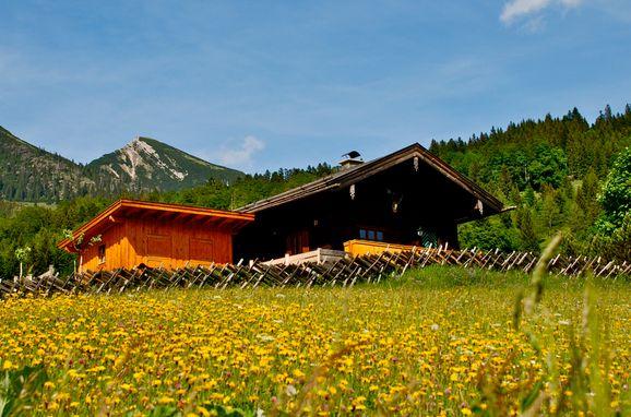 Oberholzerhütte, Sommer