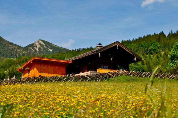 Sommer, Oberholzerhütte, Unken, Salzburg, Salzburg, Österreich