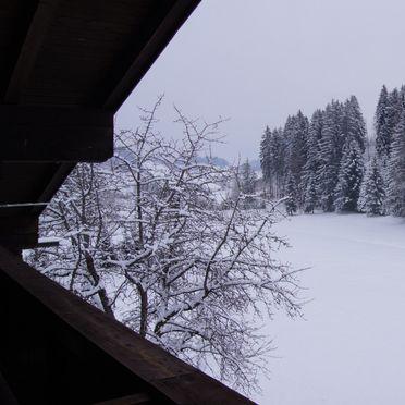 Aussicht Winter, Haus Rösslhof in Goldegg, Salzburg, Salzburg, Österreich