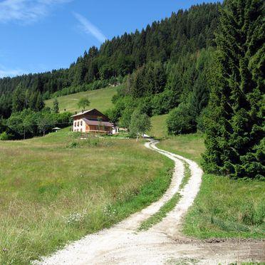Umgebung, Maso Alice, Cinte Tesino, Trentino, Trentino-Südtirol, Italien