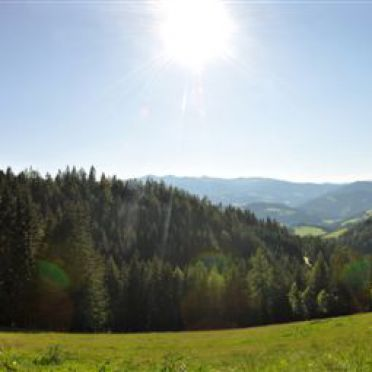 Staller Brendl, Sommer