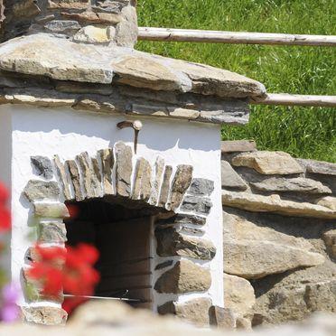 Barbecue, Staller Brendl, Obdach, Steiermark, Styria , Austria