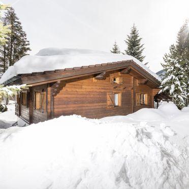 Winter, Alpen-Chalets Haus Elisabeth in Maurach am Achensee, Tirol, Tyrol, Austria