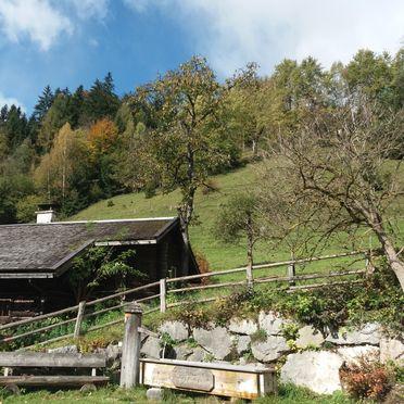 Zetzenberghütte, Sommer