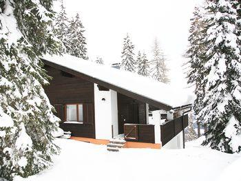 Alpine-Lodges Petra - Kärnten - Österreich