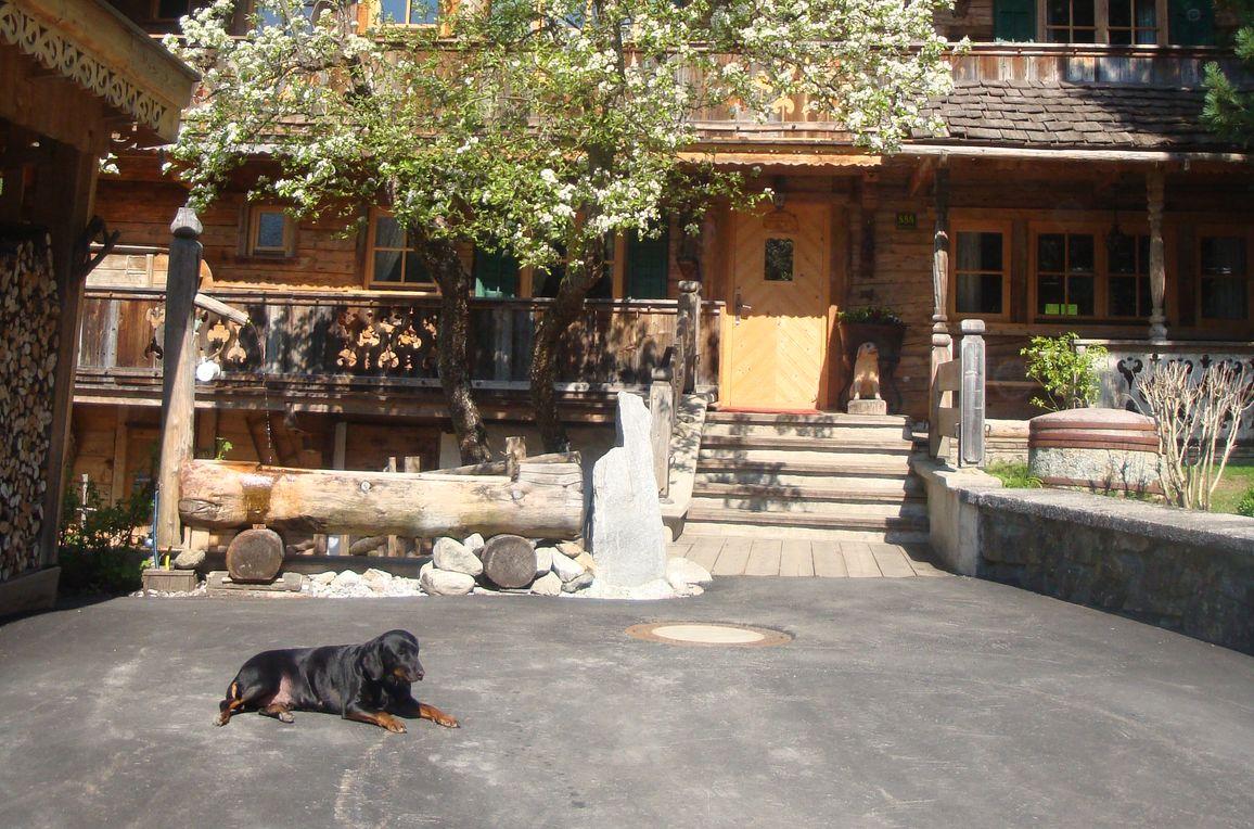 Forsthaus Daringer, Sommer