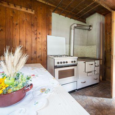Küche, Ferienhaus Stillupp, Mayrhofen, Tirol, Tirol, Österreich