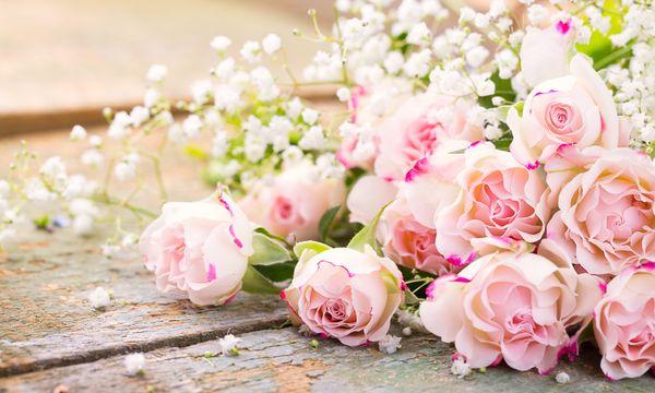 5 für 4 - Romantische Tage im November