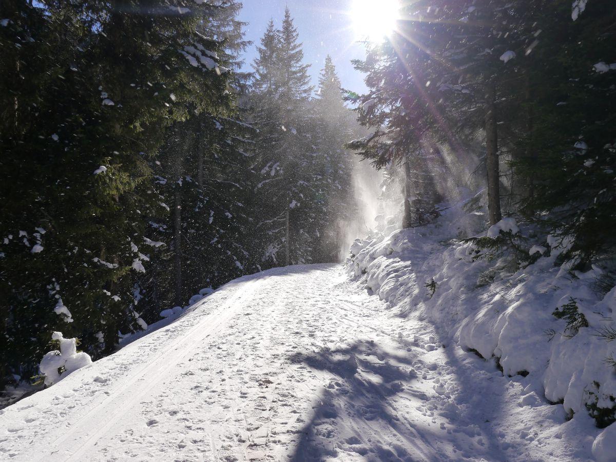 WWW - Winter Wander Wochen  | 7 Nächte