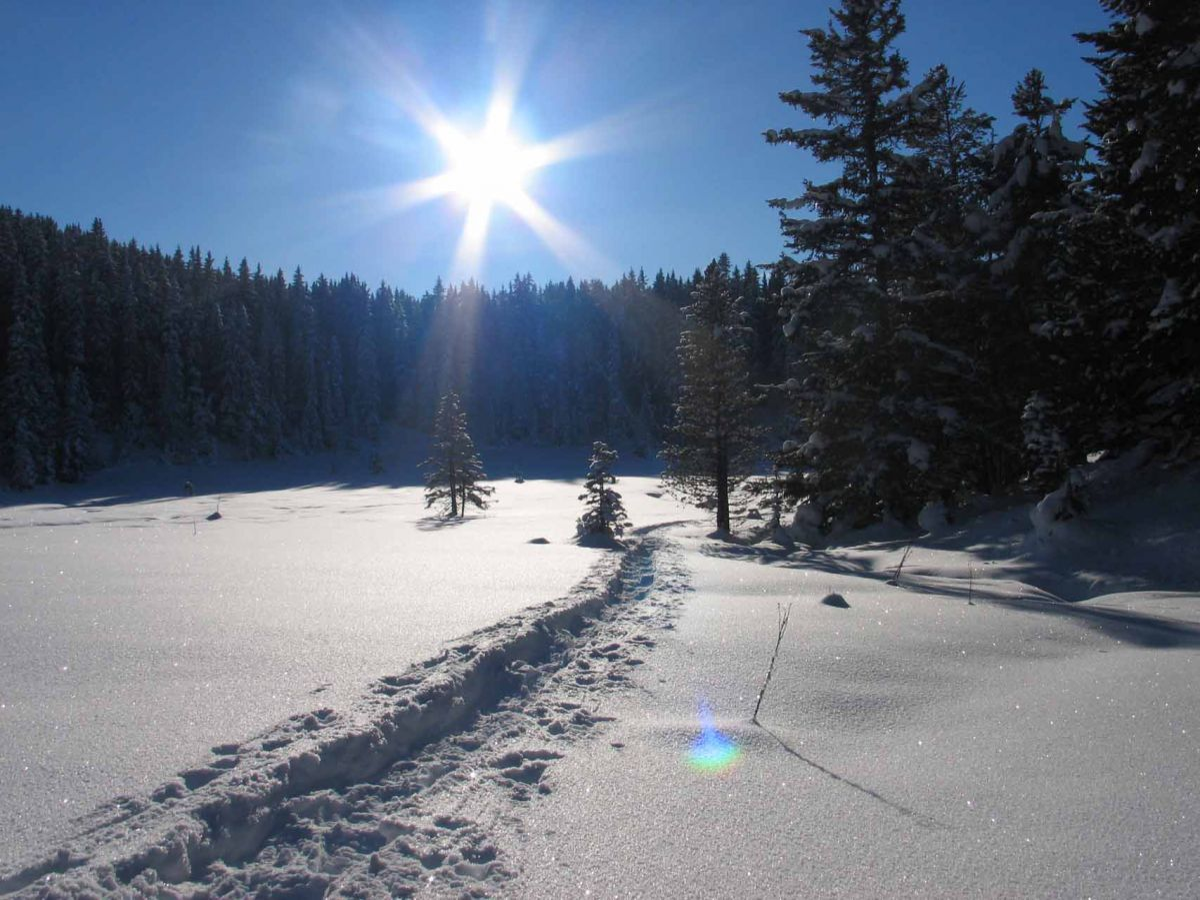 WWW - Winter Wander Wochen  | 4 Nächte