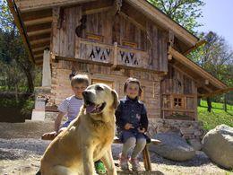 Hüttenurlaub mit Hund