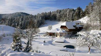 Forfait Noël et Saint-Sylvestre