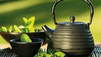 Teekessel und Blätter in Schalen