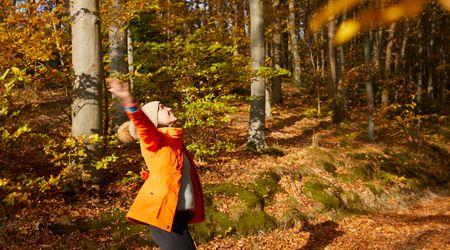ZEITLOS im Herbst 3+1