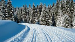 Urlaubsangebot: Schwarzwaldzauber im Winter