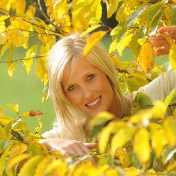 Golden Autumn - weekdays