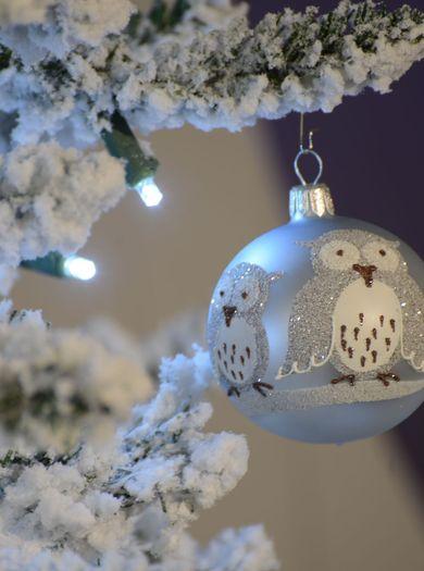 FREUNDs Vorweihnachtssgeschenk