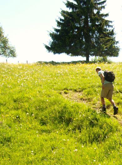 FREUNDs Wandertage - wochentags