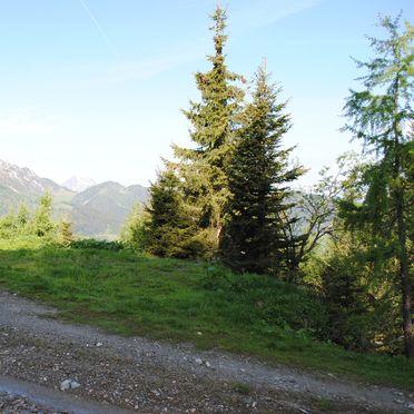 Firstwandhütte II, Ausblick