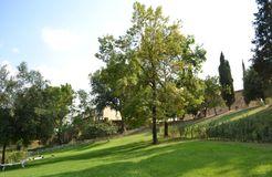 Bio-Agriturismo Il Cerreto, Pomarance (Pisa), Tuscany, Italy (8/19)