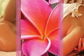 Lomi Lomi Nui | Ganzkörper
