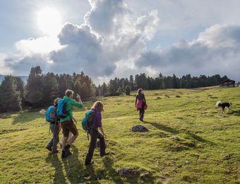 Biohotel Pennhof Urlaub Südtirol Wandern
